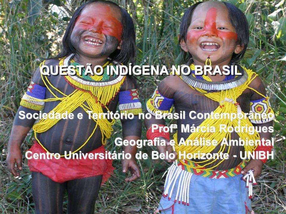 QUESTÃO INDÍGENA NO BRASIL Sociedade e Território no Brasil Contemporâneo Profª Márcia Rodrigues Geografia e Análise Ambiental Centro Universitário de