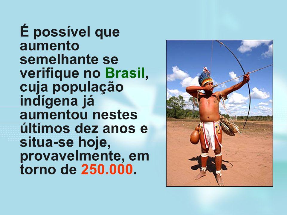 É possível que aumento semelhante se verifique no Brasil, cuja população indígena já aumentou nestes últimos dez anos e situa-se hoje, provavelmente,
