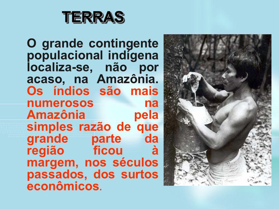TERRASTERRAS O grande contingente populacional indígena localiza-se, não por acaso, na Amazônia. Os índios são mais numerosos na Amazônia pela simples