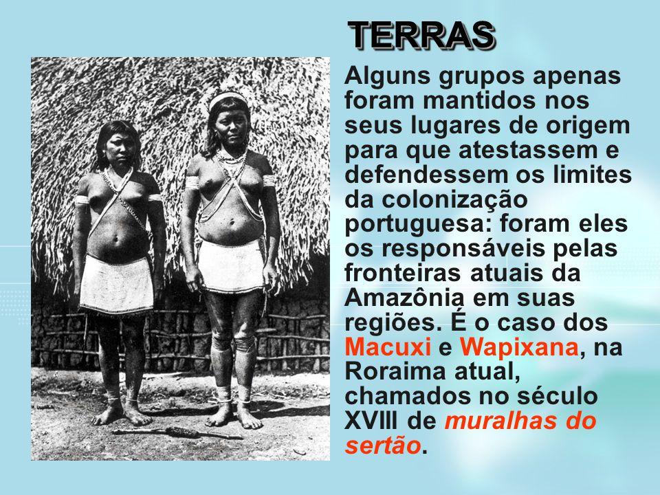 TERRASTERRAS Alguns grupos apenas foram mantidos nos seus lugares de origem para que atestassem e defendessem os limites da colonização portuguesa: fo
