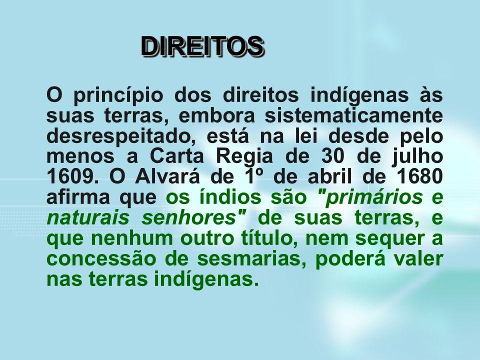 DIREITOSDIREITOS O princípio dos direitos indígenas às suas terras, embora sistematicamente desrespeitado, está na lei desde pelo menos a Carta Regia