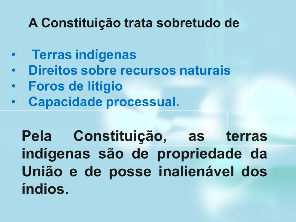 A Constituição trata sobretudo de Terras indígenas Direitos sobre recursos naturais Foros de litígio Capacidade processual. Pela Constituição, as terr
