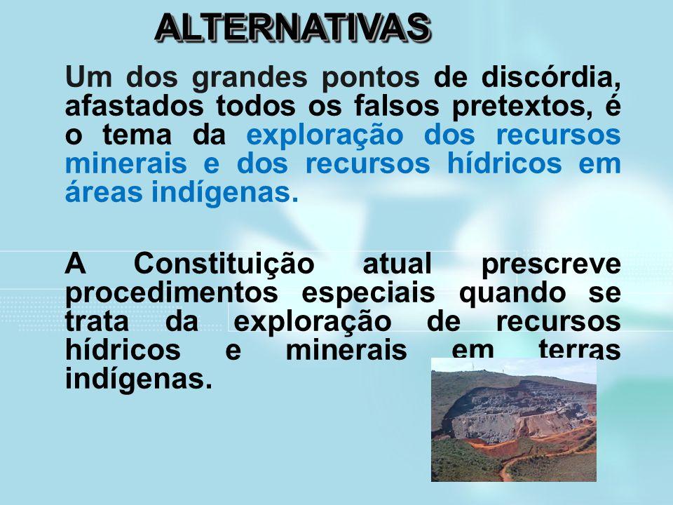 ALTERNATIVASALTERNATIVAS Um dos grandes pontos de discórdia, afastados todos os falsos pretextos, é o tema da exploração dos recursos minerais e dos r