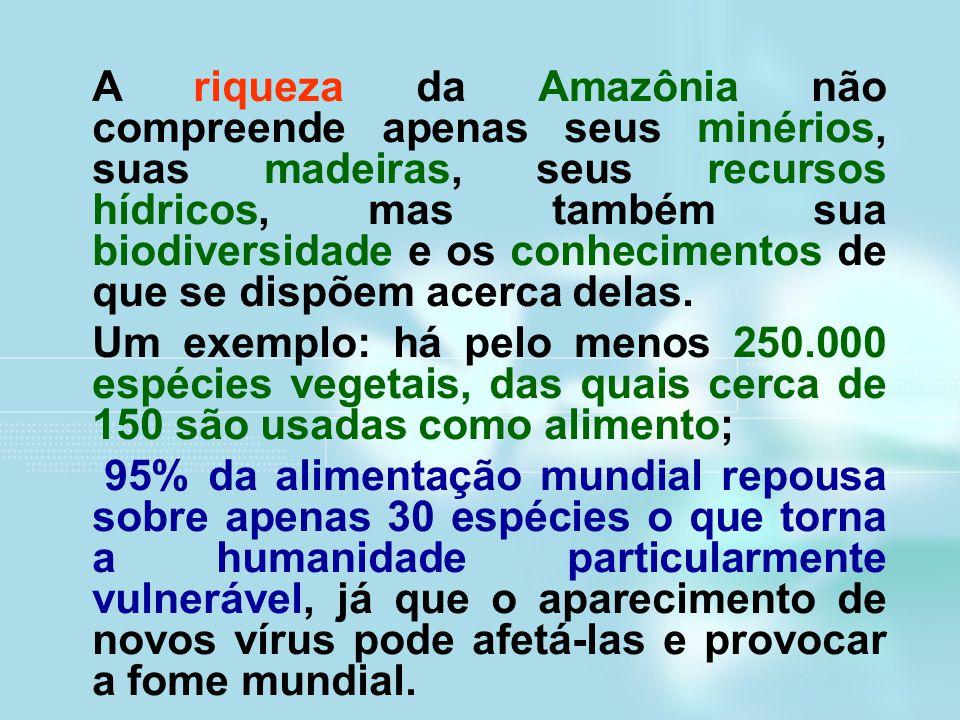 A riqueza da Amazônia não compreende apenas seus minérios, suas madeiras, seus recursos hídricos, mas também sua biodiversidade e os conhecimentos de