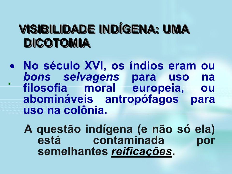 VISIBILIDADE INDÍGENA: UMA DICOTOMIA. A questão indígena (e não só ela) está contaminada por semelhantes reificações.  No século XVI, os índios eram