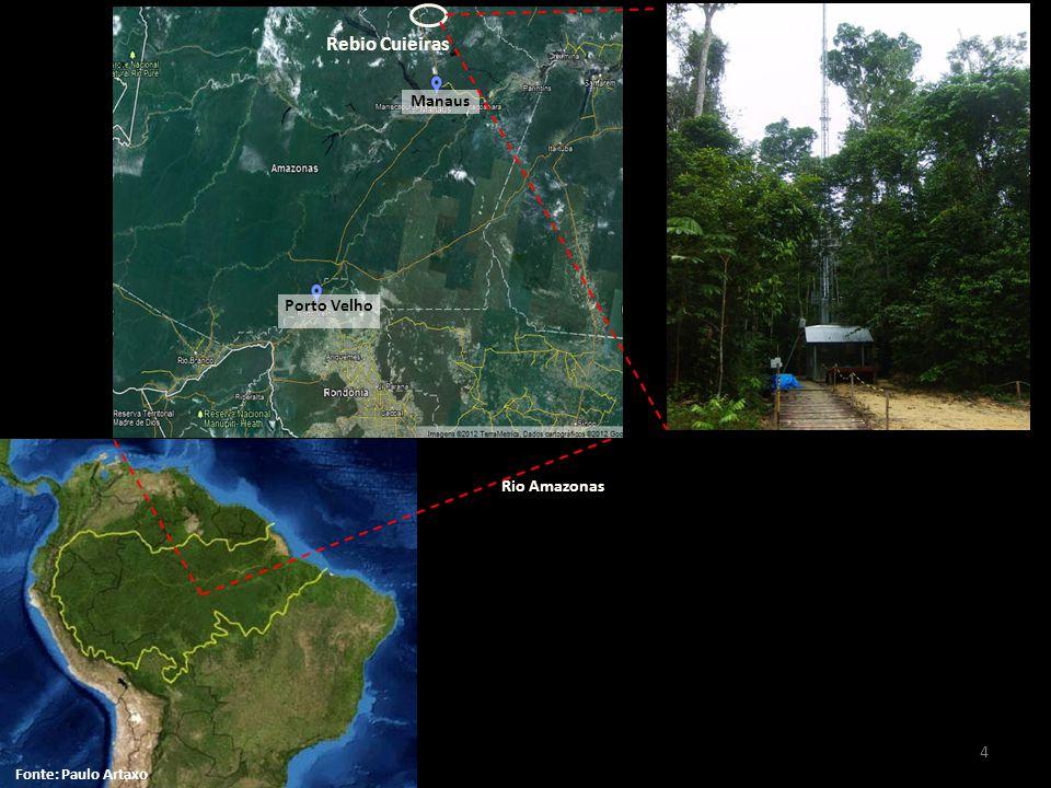 Manaus Rio Amazonas Rebio Cuieiras Foto: Carina Prado Fonte: Paulo Artaxo Porto Velho 4