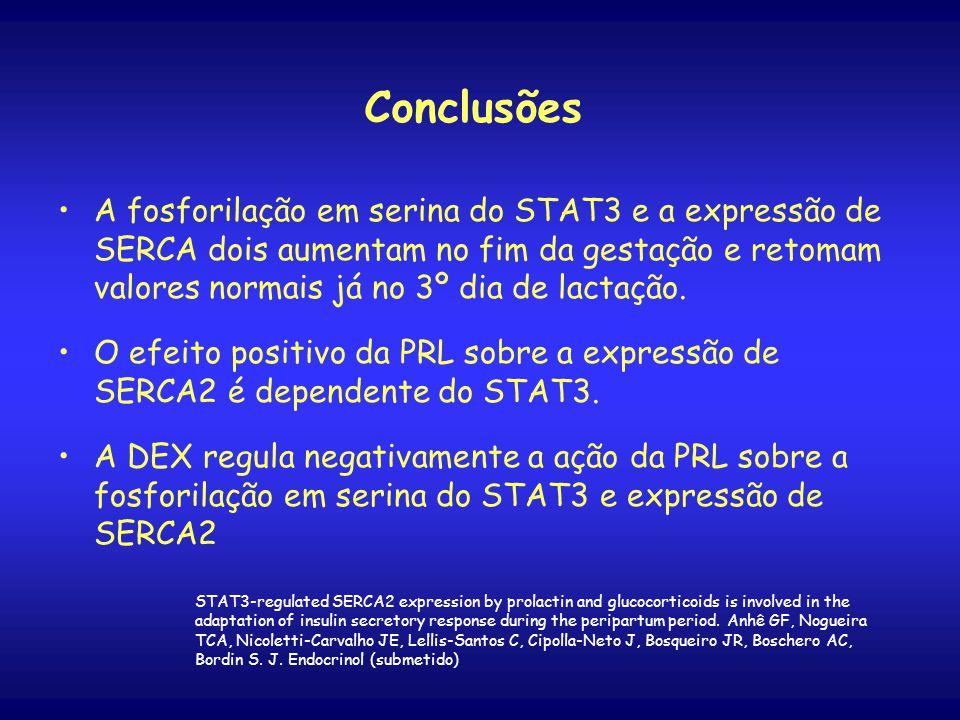 Conclusões A fosforilação em serina do STAT3 e a expressão de SERCA dois aumentam no fim da gestação e retomam valores normais já no 3º dia de lactação.