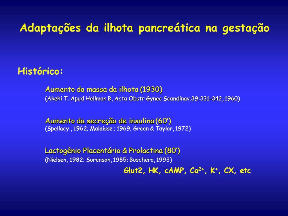 Histórico: Aumento da massa da ilhota (1930) (Akehi T.