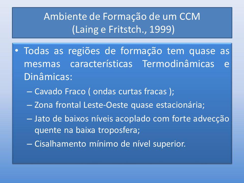 Ambiente de Formação de um CCM (Laing e Fritstch., 1999) Todas as regiões de formação tem quase as mesmas características Termodinâmicas e Dinâmicas: