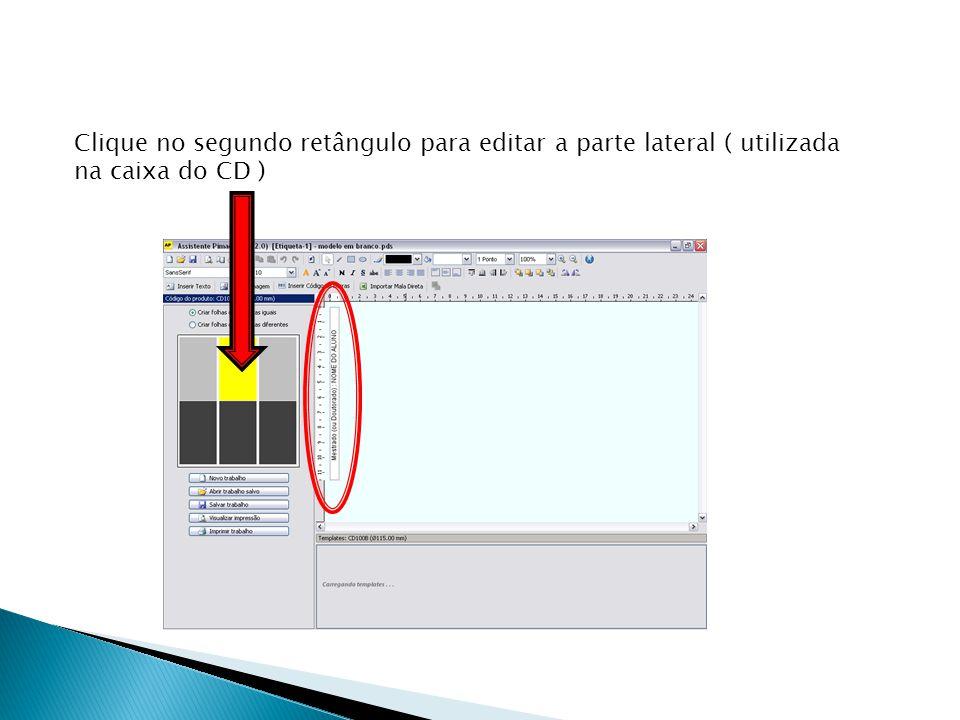 Clique no segundo retângulo para editar a parte lateral ( utilizada na caixa do CD )