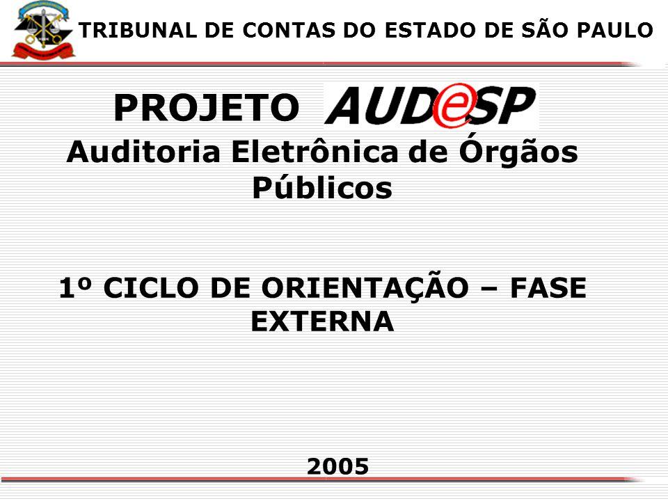 X Auditoria Eletrônica de Órgãos Públicos 1º CICLO DE ORIENTAÇÃO – FASE EXTERNA 2005 TRIBUNAL DE CONTAS DO ESTADO DE SÃO PAULO PROJETO