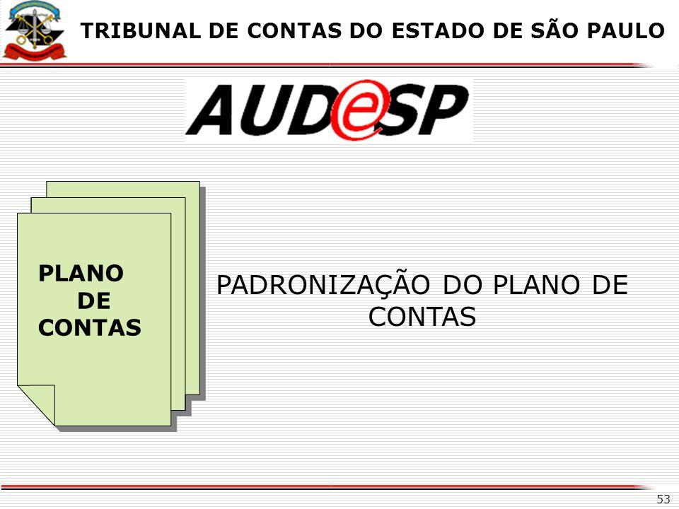 X Auditoria Eletrônica de Órgãos Públicos CICLO DE ORIENTAÇÃO – FASE EXTERNA PLANO DE CONTAS PADRONIZADO TRIBUNAL DE CONTAS DO ESTADO DE SÃO PAULO PRO