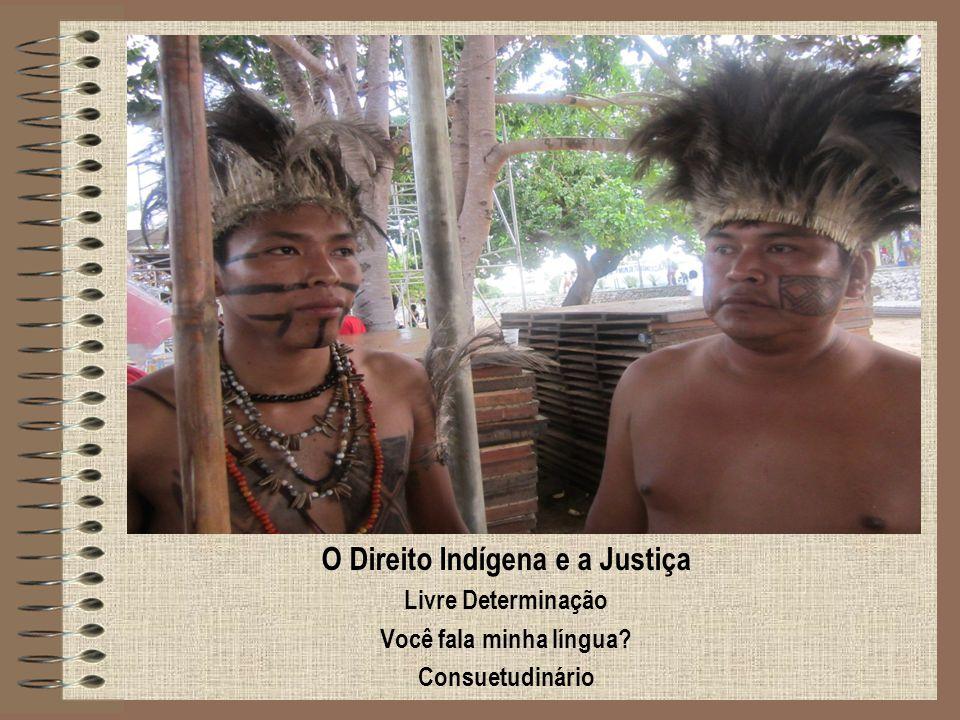 O Direito Indígena e a Justiça Livre Determinação Você fala minha língua? Consuetudinário