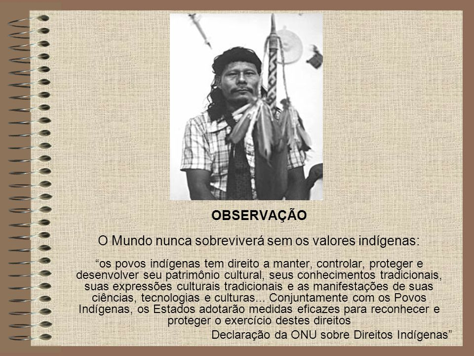 """OBSERVAÇÃO O Mundo nunca sobreviverá sem os valores indígenas: """"os povos indígenas tem direito a manter, controlar, proteger e desenvolver seu patrimô"""