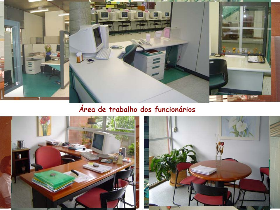 Área de trabalho dos funcionários