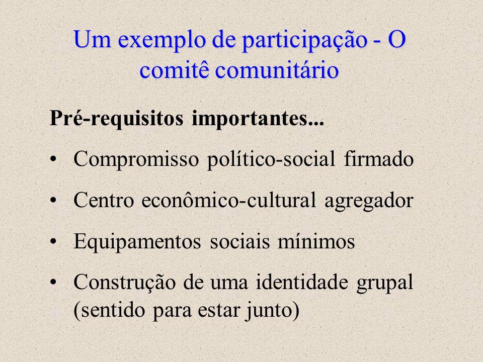 A Participação comunitária Alguns achados... 1.Organização de grupos de concertação nos territórios rurais e urbanos (Comitês comunitários do Municípi