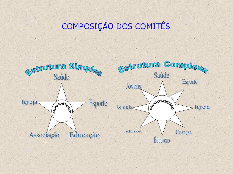 Um exemplo de participação - O comitê comunitário Pré-requisitos importantes... Compromisso político-social firmado Centro econômico-cultural agregado