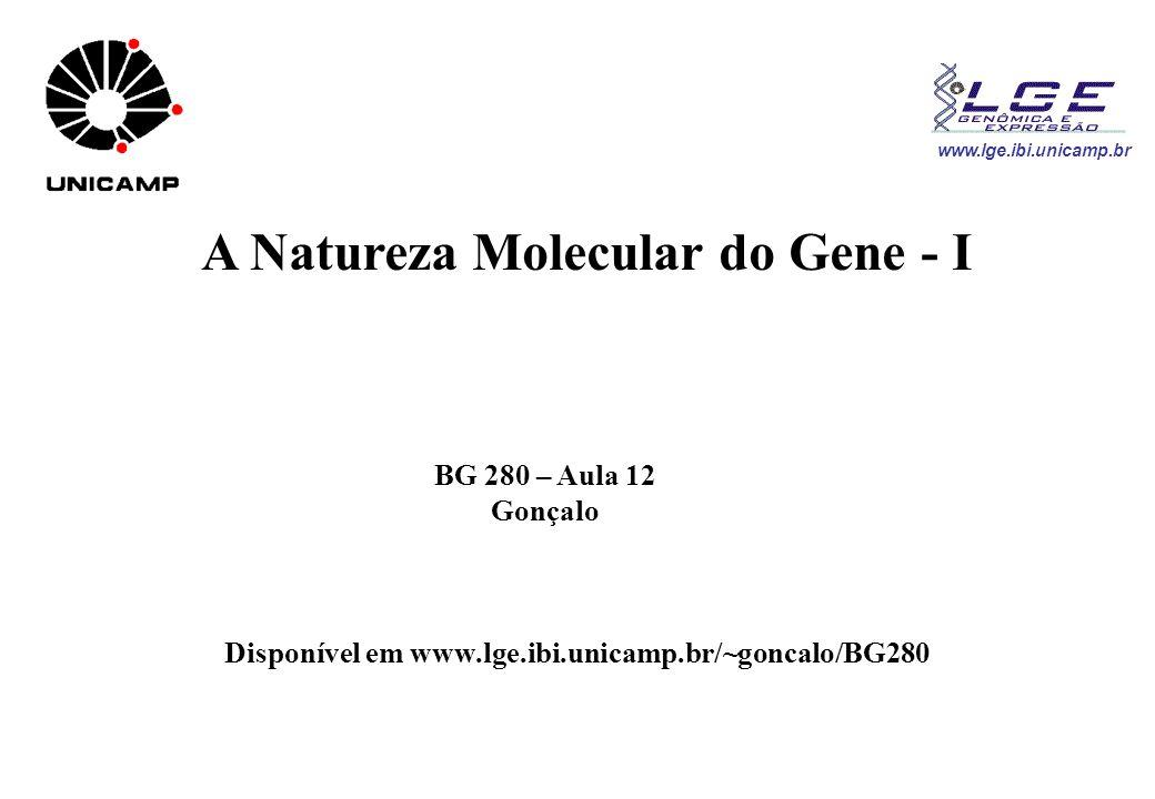www.lge.ibi.unicamp.br A Natureza Molecular do Gene - I BG 280 – Aula 12 Gonçalo Disponível em www.lge.ibi.unicamp.br/~goncalo/BG280