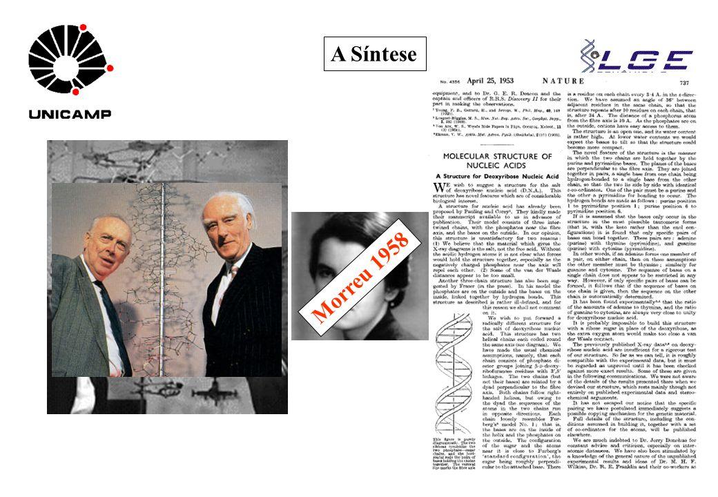 www.lge.ibi.unicamp.br A Síntese Nobel 1962 Morreu 1958