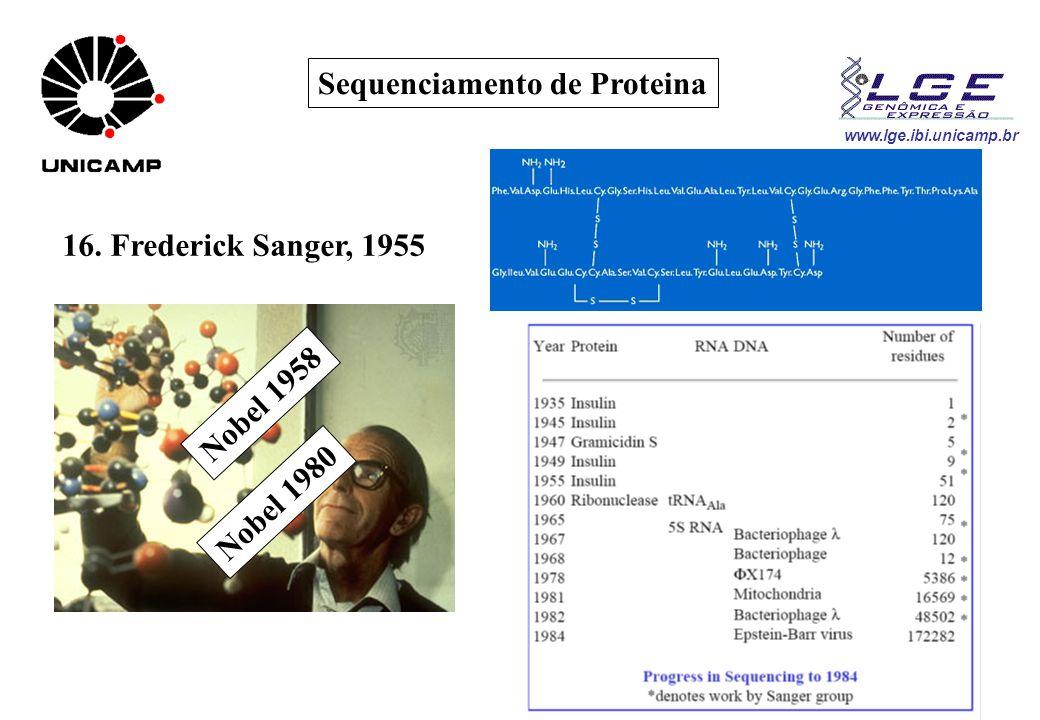www.lge.ibi.unicamp.br Sequenciamento de Proteina 16. Frederick Sanger, 1955 Nobel 1958 Nobel 1980