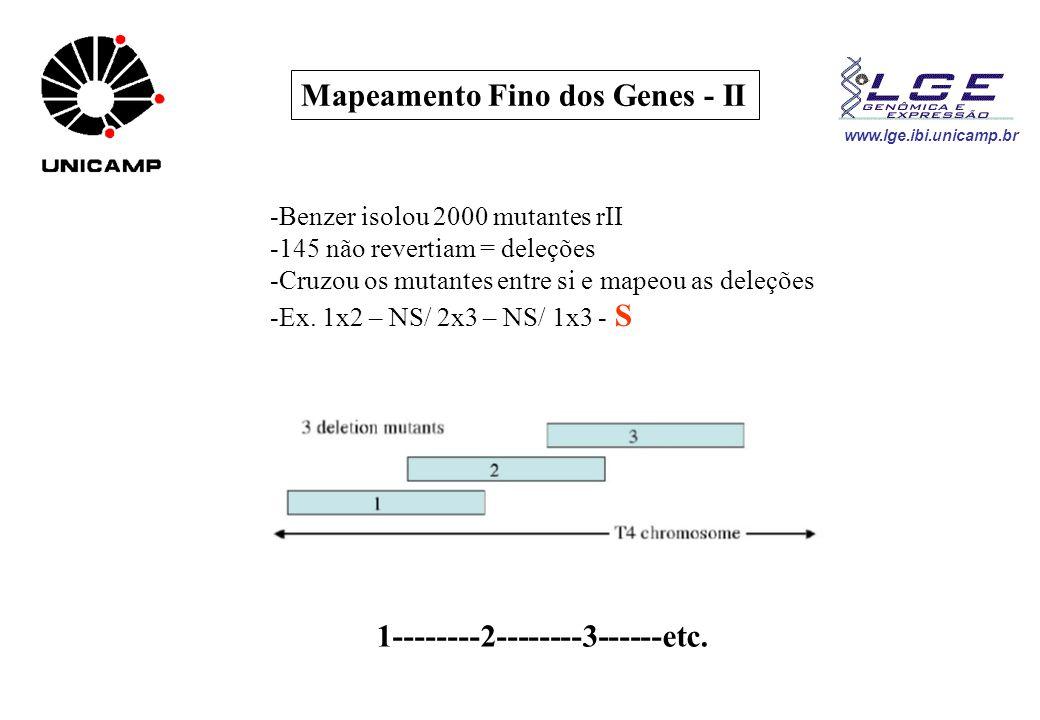 www.lge.ibi.unicamp.br Mapeamento Fino dos Genes - II -Benzer isolou 2000 mutantes rII -145 não revertiam = deleções -Cruzou os mutantes entre si e ma