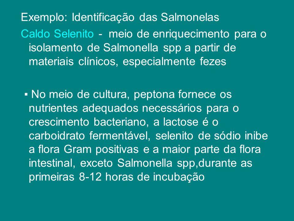 Exemplo: Identificação das Salmonelas Caldo Selenito - meio de enriquecimento para o isolamento de Salmonella spp a partir de materiais clínicos, espe