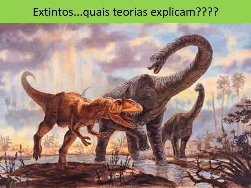 Extintos...quais teorias explicam????