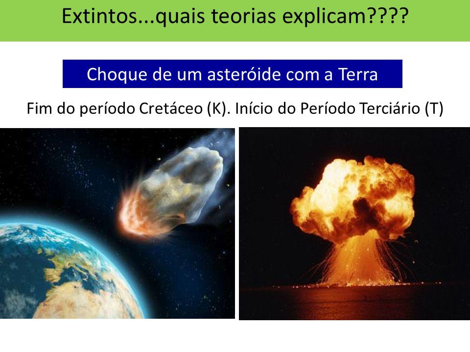 Choque de um asteróide com a Terra Fim do período Cretáceo (K).