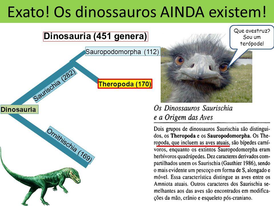 Exato.Os dinossauros AINDA existem.