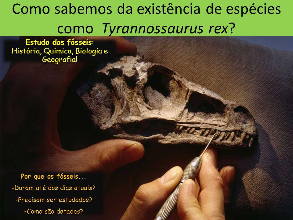 Como sabemos da existência de espécies como Tyrannossaurus rex.