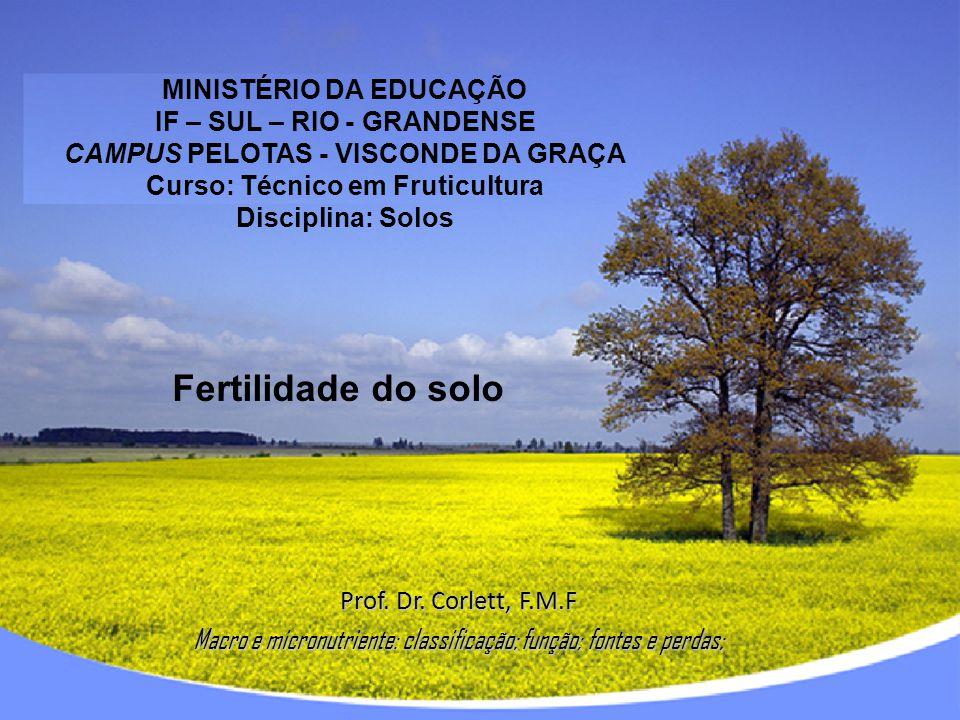 MINISTÉRIO DA EDUCAÇÃO IF – SUL – RIO - GRANDENSE CAMPUS PELOTAS - VISCONDE DA GRAÇA Curso: Técnico em Fruticultura Disciplina: Solos Prof. Dr. Corlet