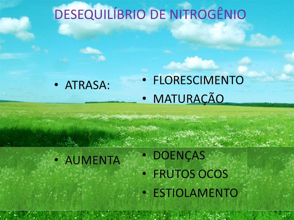 BORO Responsável pelo transporte de açucares, formação das paredes celulares, germinação do pólen e formação da semente.