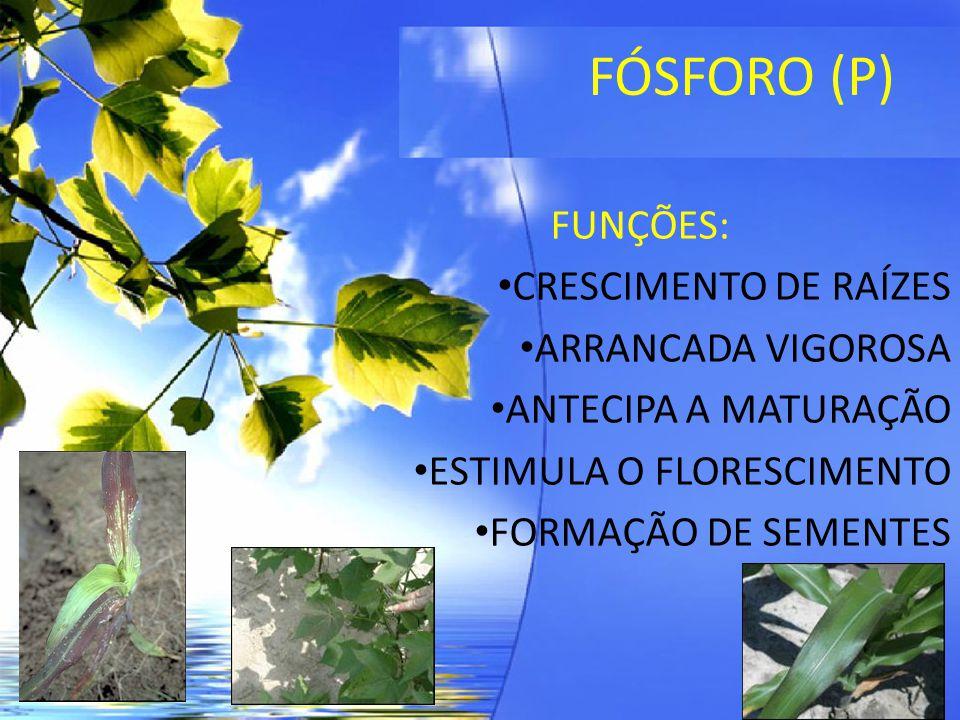 FÓSFORO (P) FONTES: MAP – 9 (N) e 48 (P 2 O5) ÁCIDO FOSFÓRICO – 64 (P) FÓRMULAS PRONTAS