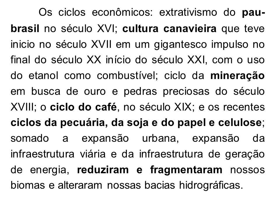 Os ciclos econômicos: extrativismo do pau- brasil no século XVI; cultura canavieira que teve inicio no século XVII em um gigantesco impulso no final d