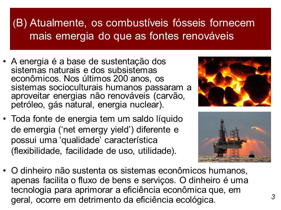 3 A energia é a base de sustentação dos sistemas naturais e dos subsistemas econômicos. Nos últimos 200 anos, os sistemas socioculturais humanos passa