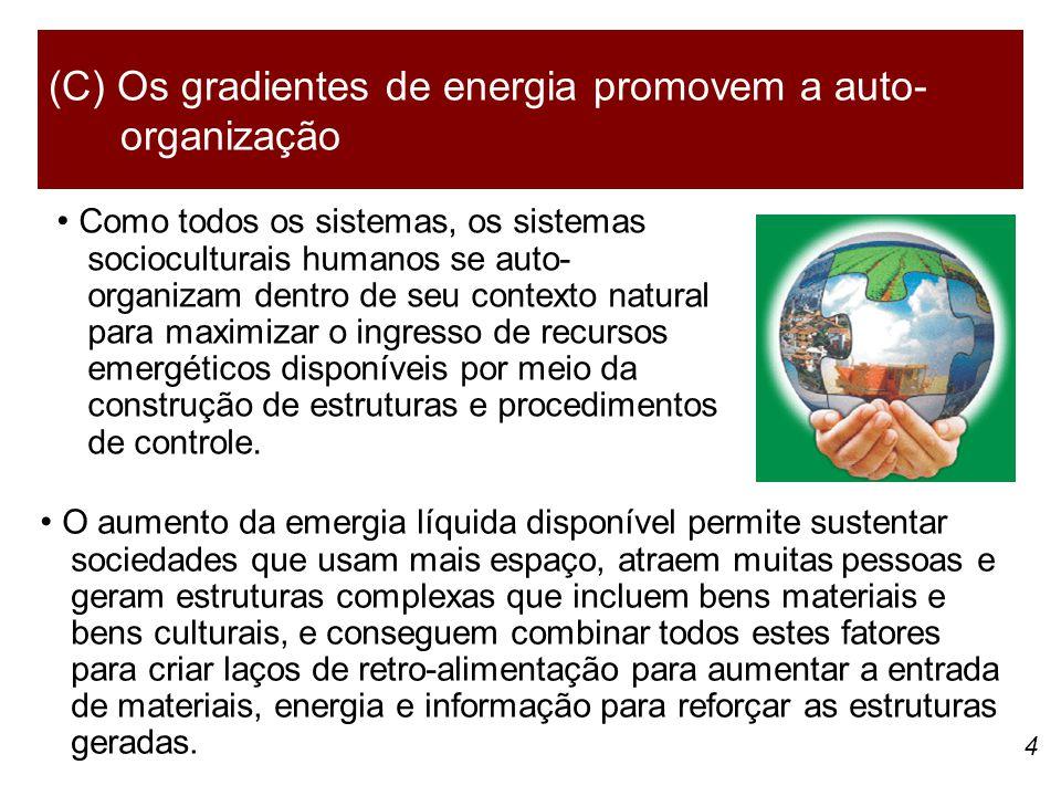 4 Como todos os sistemas, os sistemas socioculturais humanos se auto- organizam dentro de seu contexto natural para maximizar o ingresso de recursos emergéticos disponíveis por meio da construção de estruturas e procedimentos de controle.