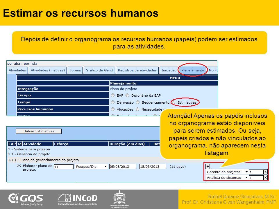 Rafael Queiroz Gonçalves, M.Sc. Prof. Dr. Christiane G.von Wangenheim, PMP Estimar os recursos humanos Atenção! Apenas os papéis inclusos no organogra