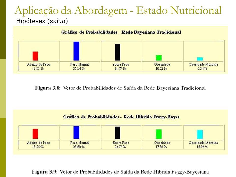 Aplicação da Abordagem - Estado Nutricional Hipóteses (saída)
