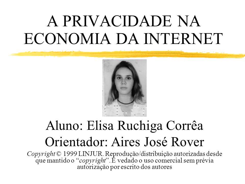 A PRIVACIDADE NA ECONOMIA DA INTERNET Aluno: Elisa Ruchiga Corrêa Orientador: Aires José Rover Copyright © 1999 LINJUR. Reprodução/distribuição autori