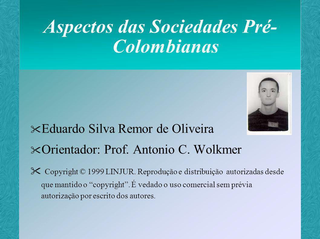 Civilizações Pré-Colombianas Representam-se de duas formas: Sociedades primitivas da América do Norte e América do Sul Sociedades mais desenvolvidas da America Central e dos Andes Maias Astecas Incas