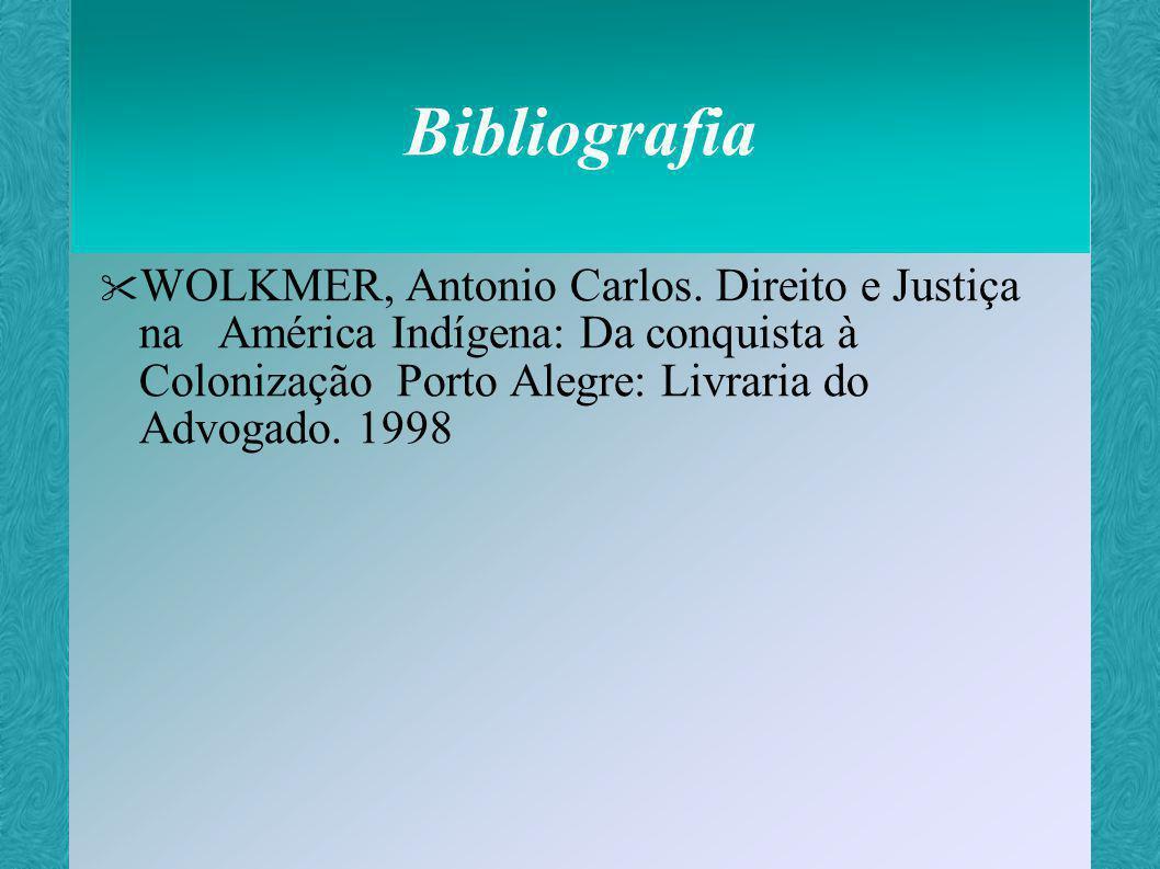 Universidade Federal de Santa Catarina - UFSC Centro de Ciências Jurídicas - CCJ Departamento de Direito 30/12/99 Disciplina de Informática Jurídica Professor: Aires José Rover