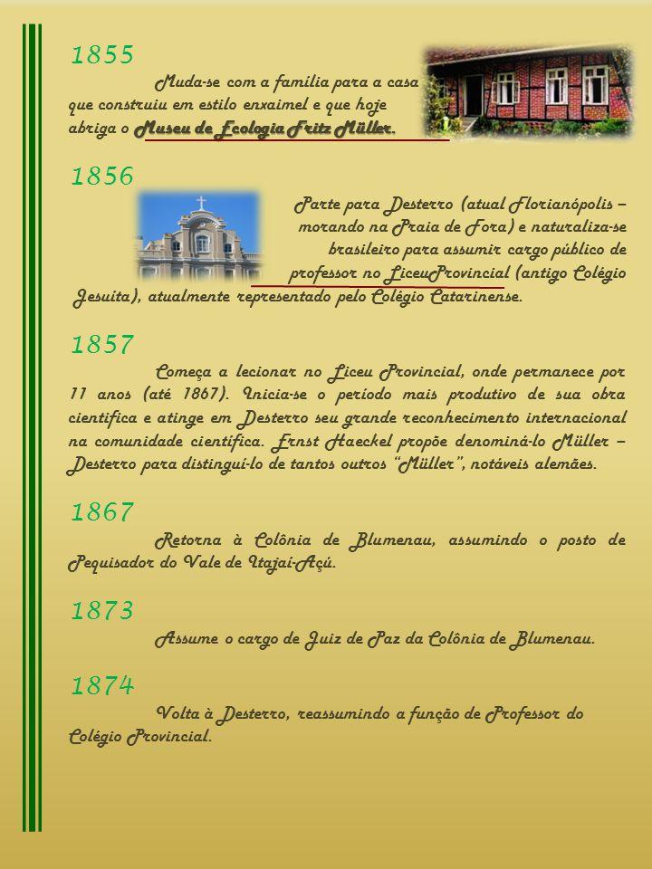 1874 Volta à Desterro, reassumindo a função de Professor do Colégio Provincial.