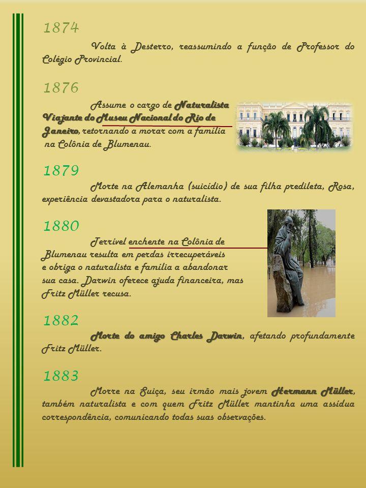 1874 Volta à Desterro, reassumindo a função de Professor do Colégio Provincial. 1876 Naturalista Assume o cargo de Naturalista Viajante do Museu Nacio