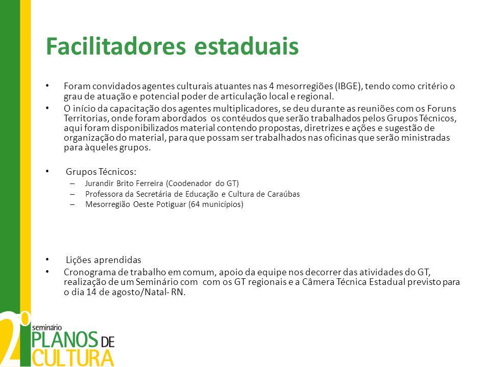 Facilitadores estaduais Foram convidados agentes culturais atuantes nas 4 mesorregiões (IBGE), tendo como critério o grau de atuação e potencial poder