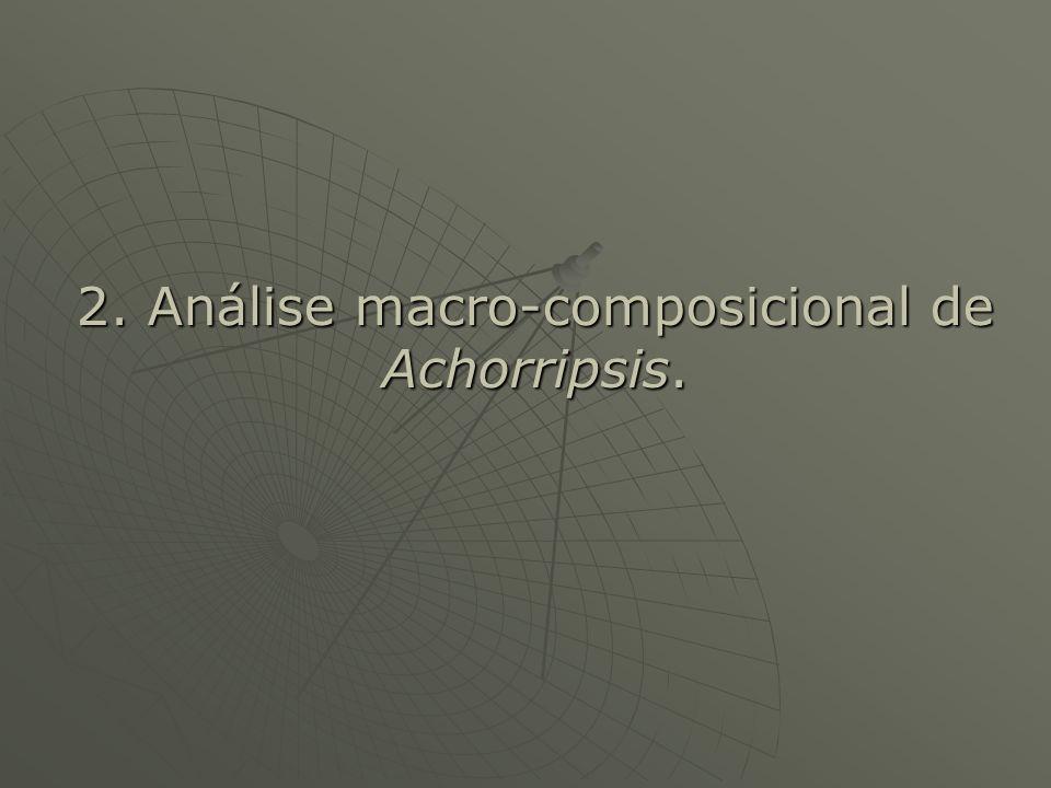 2. Análise macro-composicional de Achorripsis.