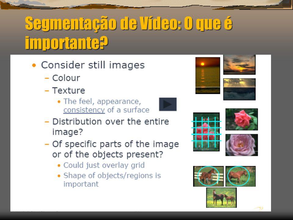 Segmentação de Vídeo: O que é importante?