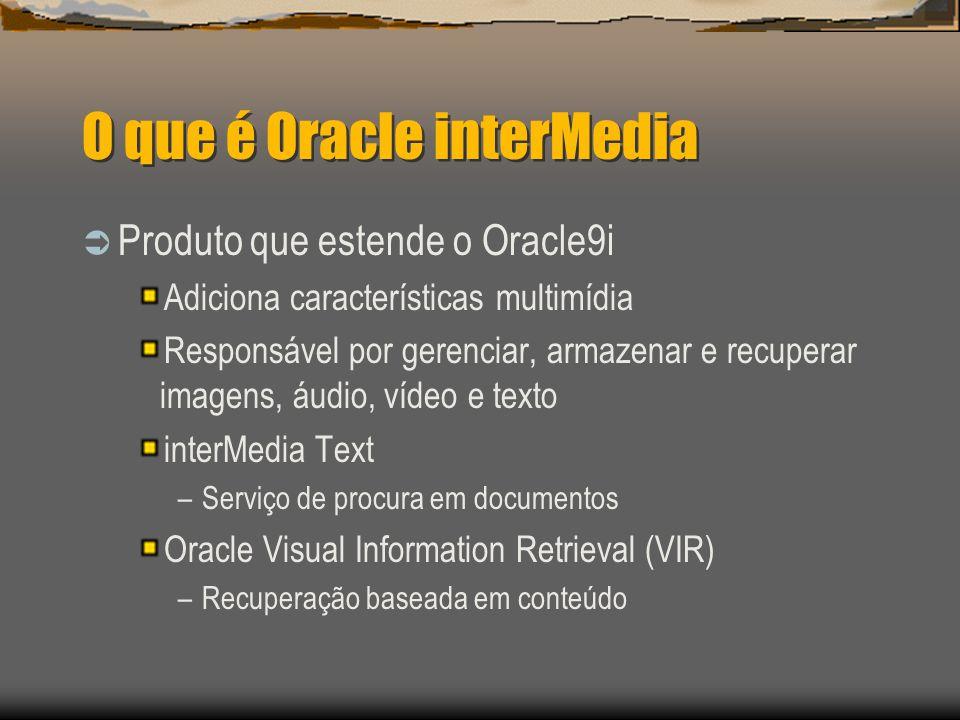 O que é Oracle interMedia  Produto que estende o Oracle9i Adiciona características multimídia Responsável por gerenciar, armazenar e recuperar imagens, áudio, vídeo e texto interMedia Text –Serviço de procura em documentos Oracle Visual Information Retrieval (VIR) –Recuperação baseada em conteúdo