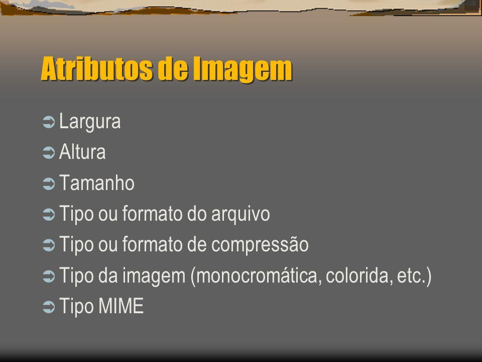 Atributos de Imagem  Largura  Altura  Tamanho  Tipo ou formato do arquivo  Tipo ou formato de compressão  Tipo da imagem (monocromática, colorida, etc.)  Tipo MIME