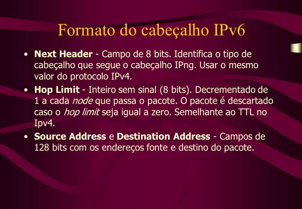 Formato do cabeçalho IPv6 Next Header - Campo de 8 bits.