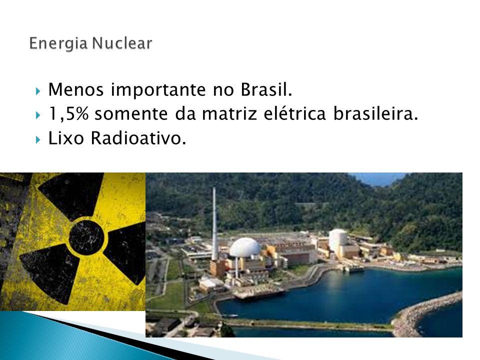  Menos importante no Brasil.  1,5% somente da matriz elétrica brasileira.  Lixo Radioativo.